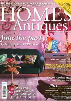 Homes & Antiques #12